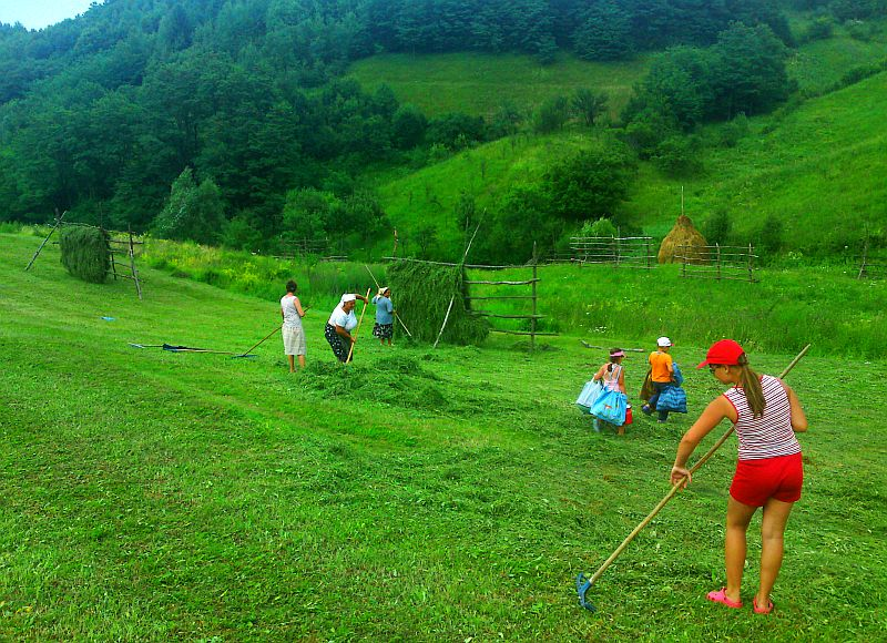 Familia fratelui meu la muncile câmpului. Vișeul de Sus.